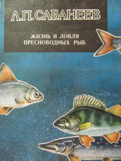 рыбалка сабонеев